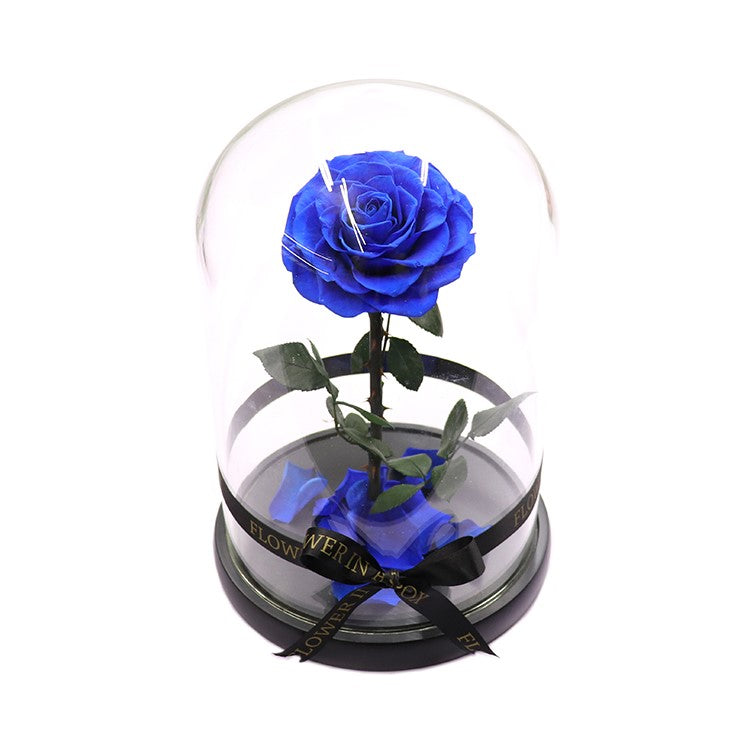 Enchanted Rose - ROYAL BLUE - flower in a box