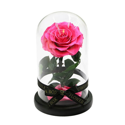 Enchanted Rose Mini - HOT PINK - flower in a box