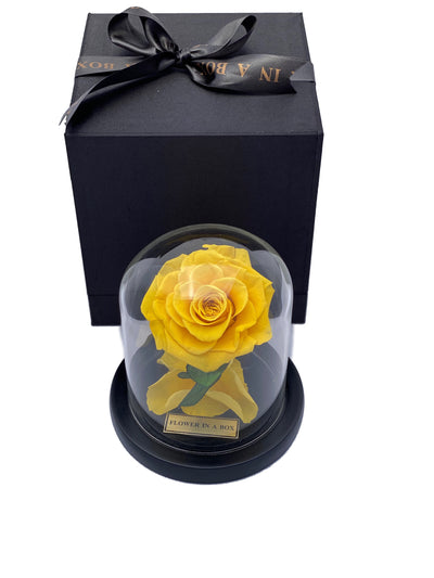 Enchanted Rose Tiny - YELLOW - flower in a box