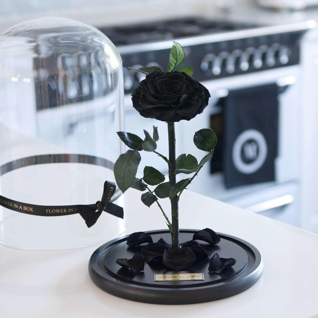 Enchanted Rose - BLACK - flower in a box