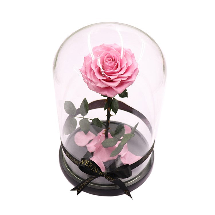 Enchanted Rose - LIGHT PINK - flower in a box