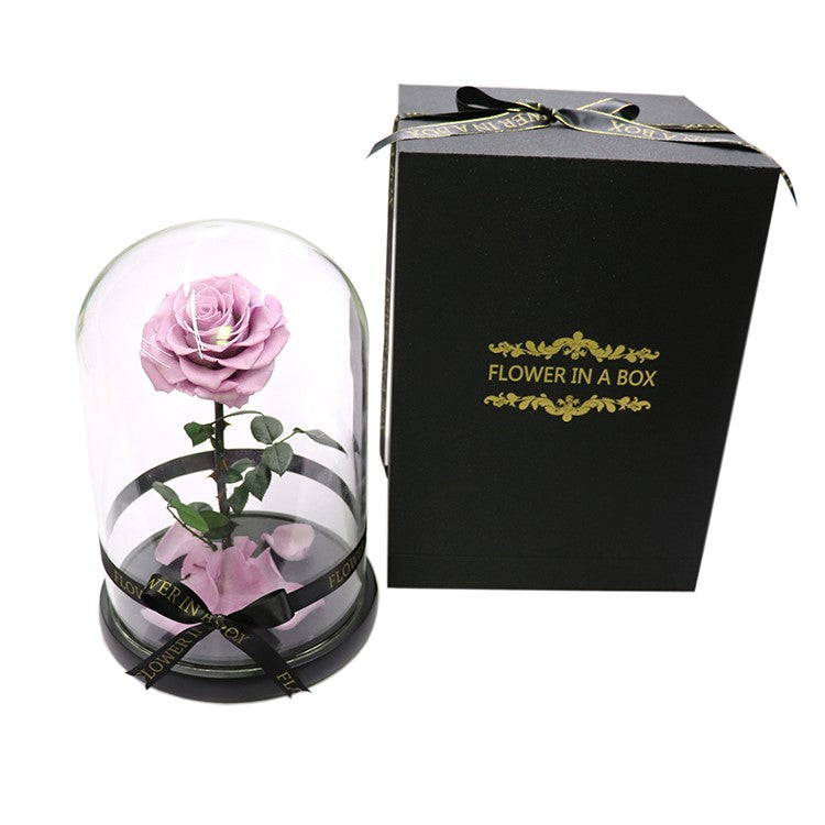 Enchanted Rose - LILAC - flower in a box