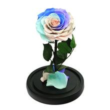 Load image into Gallery viewer, Enchanted Rose Mini - RAINBOW - flower in a box