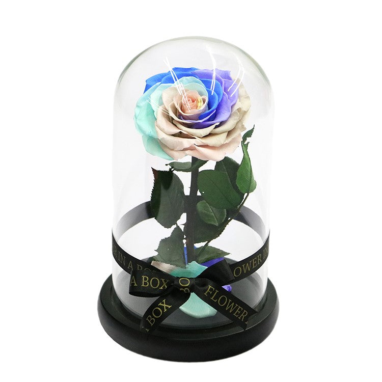 Enchanted Rose Mini - RAINBOW - flower in a box