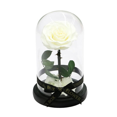 Enchanted Rose Mini - WHITE - flower in a box