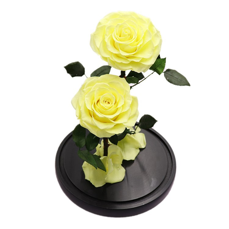 Enchanted Rose Deux- YELLOW - flower in a box