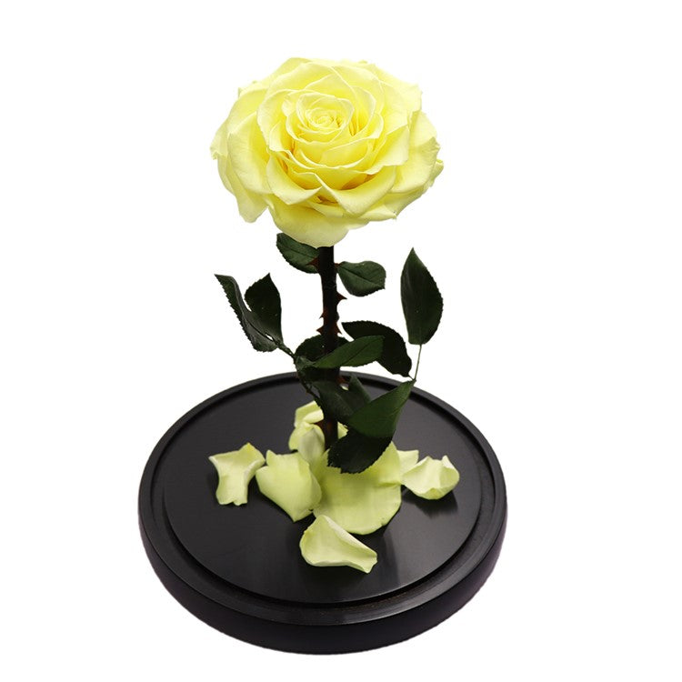 Enchanted Rose - YELLOW - flower in a box