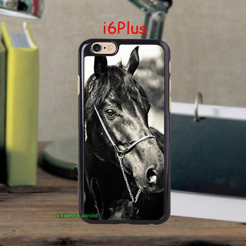 Black Beauty Case - HorsinRound