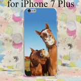 Horsie Smiles iPhone Case - Season Finds