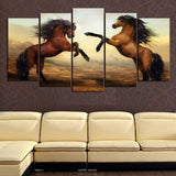 Beautiful Bay Horses - HorsinRound - 1