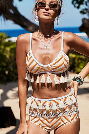Brown White Chevron Print Mesh Tassel Trim Bikini Bottom