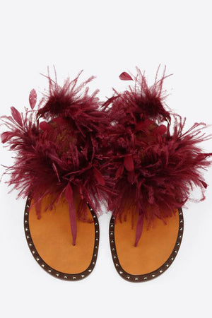Burgundy Studded Flat Thong Sandals With Feather Details (4095660425275)