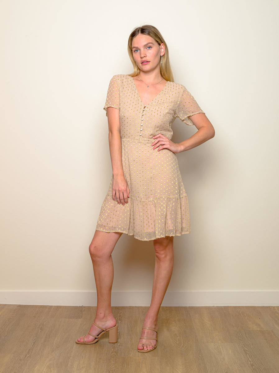 "Why Mary Nude & Gold ""Dreamers"" Dress"