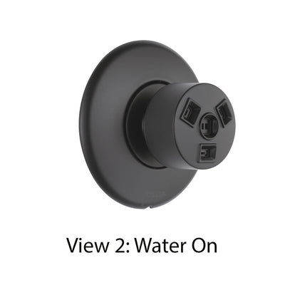 Delta Modern Matte Black Finish HydraChoice Wall Mount Body Spray Includes Valve, Round Trim, and Massaging Spray Head D3650V