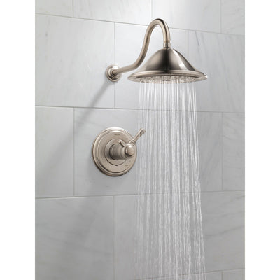 Delta Cassidy Stainless Steel Finish Thermostatic Shower Faucet with Valve D855V