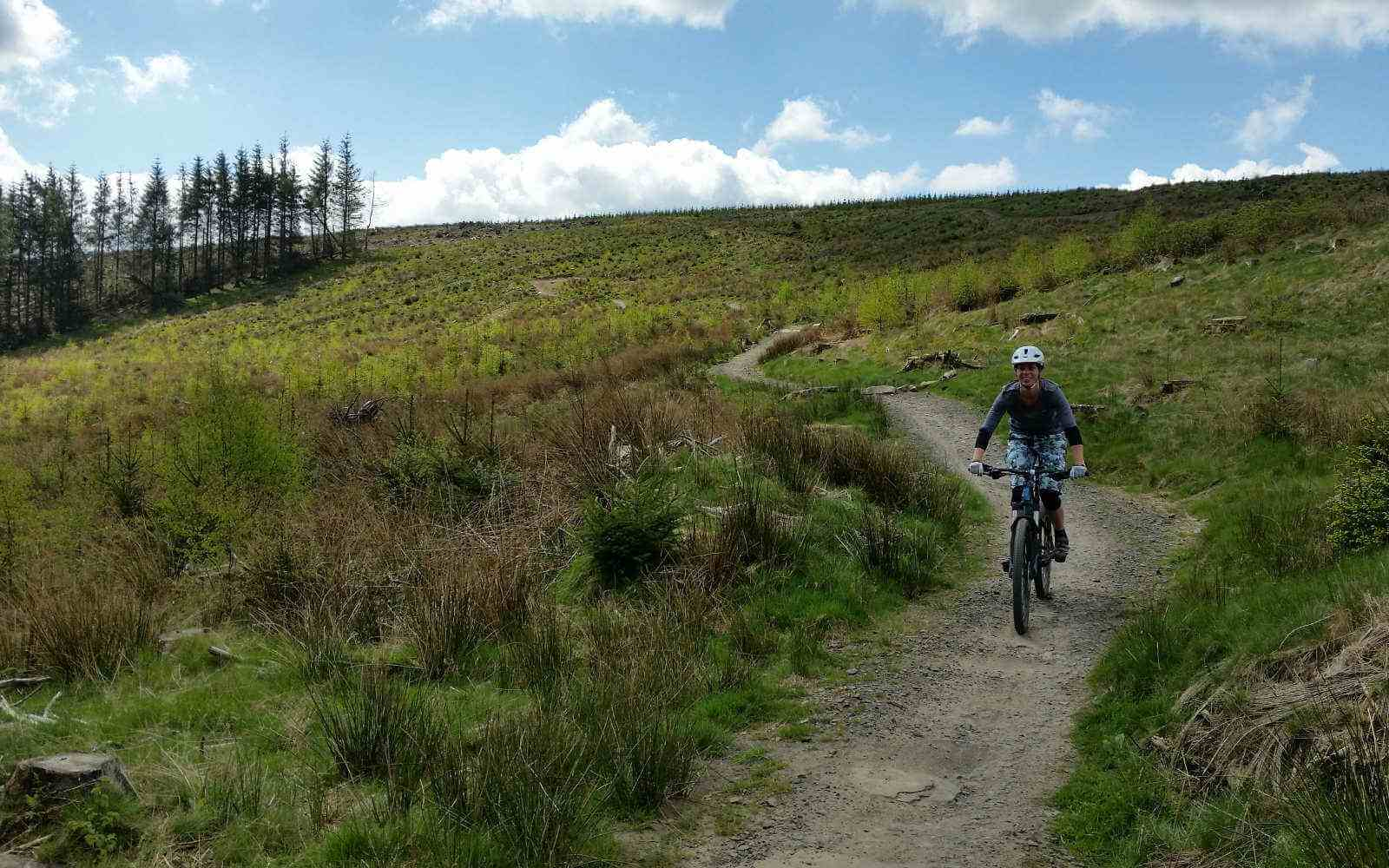 Mountainbiking downhill on trails at Bike Park Wales