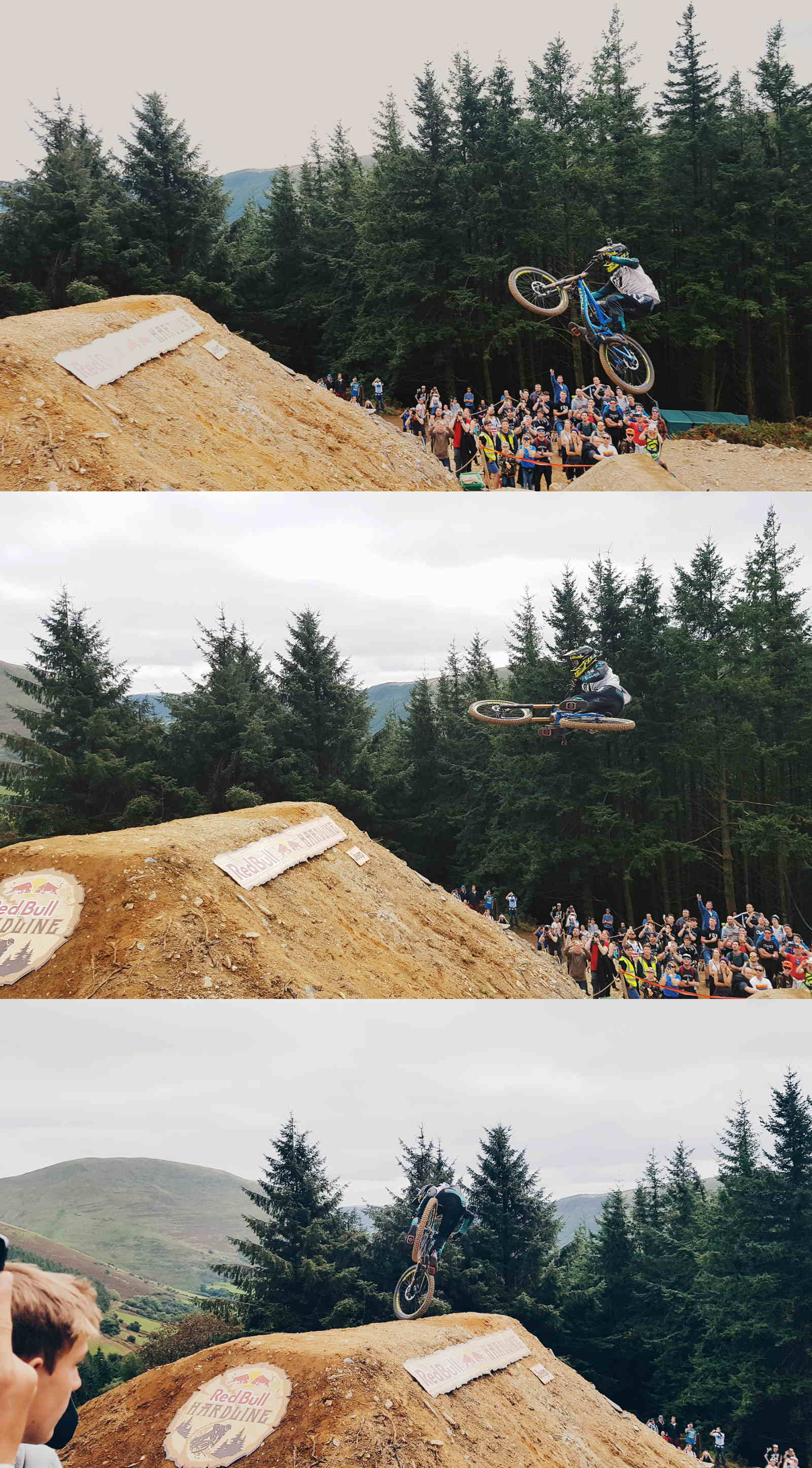 Red Bull Hardline jump dirty ferns section