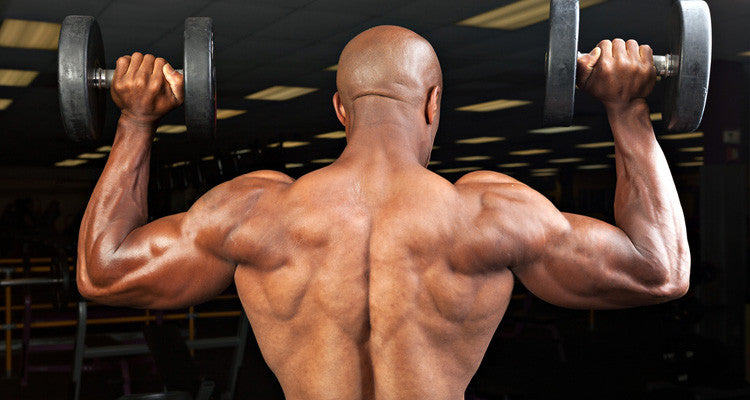 How To: Arnold Press for Rounded Delts