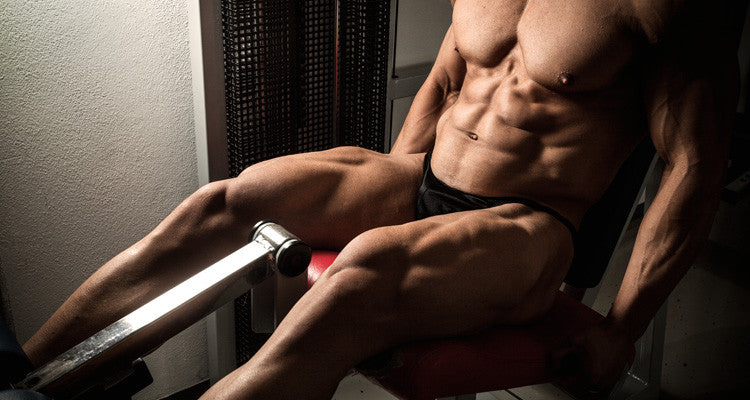 Build Powerful Quads and Hams with the Bodybuilder Leg Workout