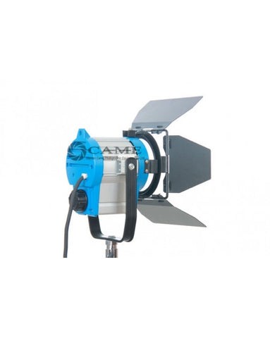 300W500W Fresnel Tungsten Continuous Light
