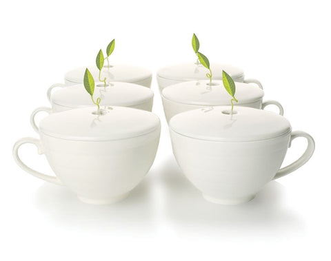 Café Cup set of six