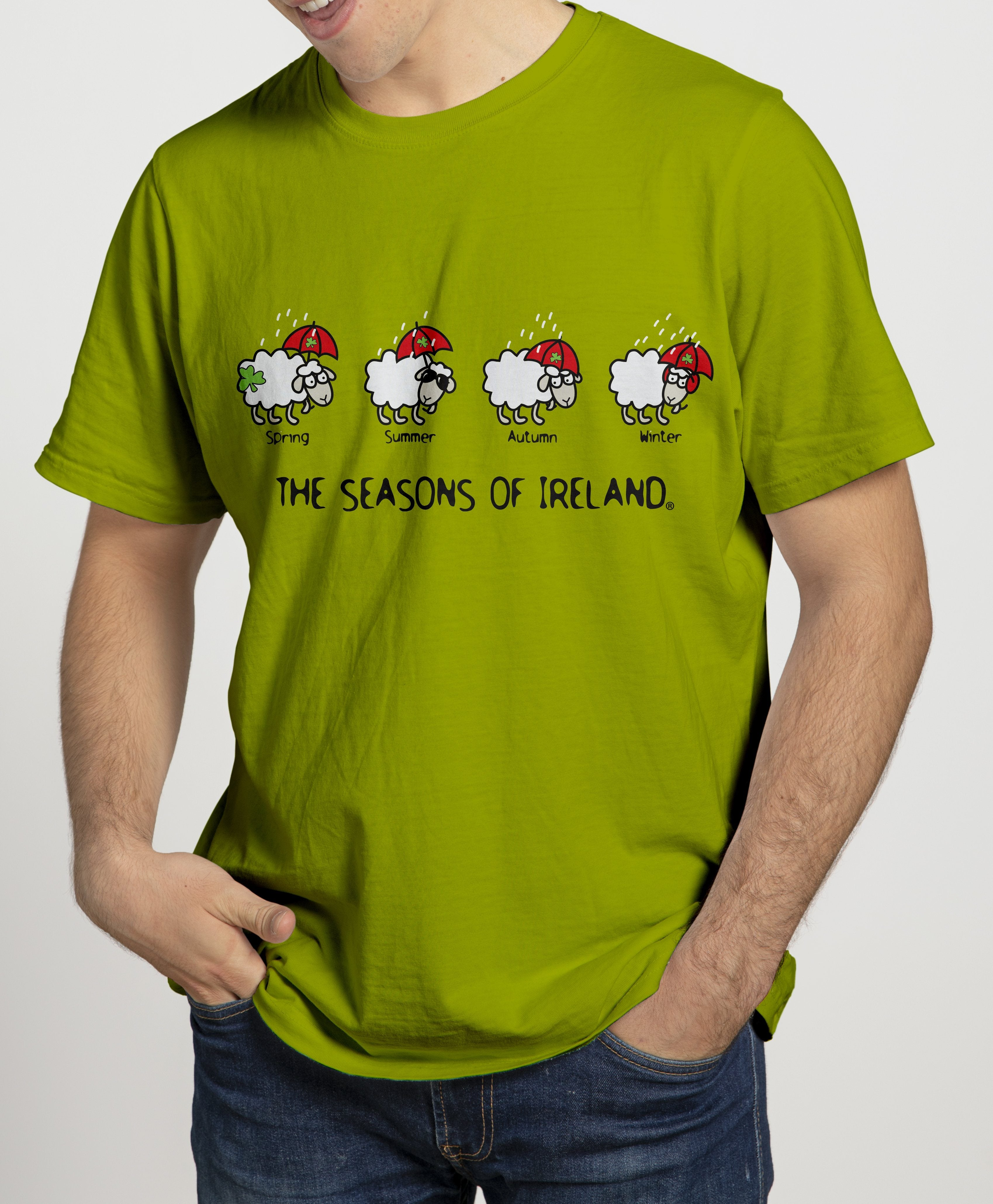 SEASONS OF IRELAND LINE Mens T-Shirts Cara Craft S KIWI