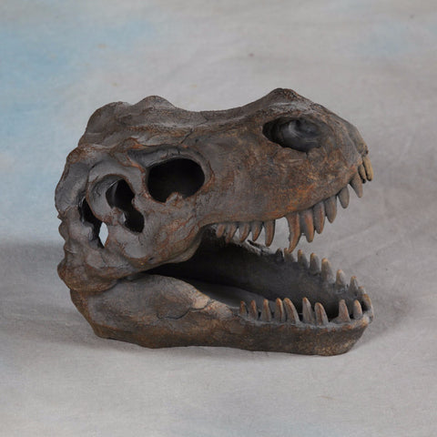 T-Rex Skull Table Decor