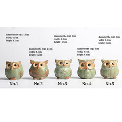 5pc/set Owl Flower Pot