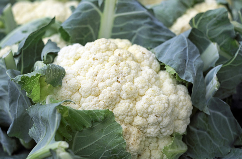 Cauliflower – Humble, Yet Wonderful