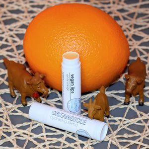 Vegan Creamsicle for Lips-Lip-in2ition mercantile