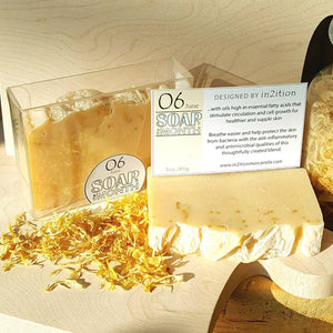 Soap of the Month-Wash-in2ition mercantile