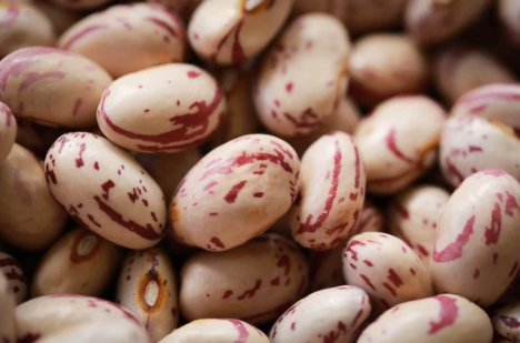 Beans - Rancho Gordo Heirloom Cranberry Beans
