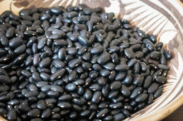 Beans - Rancho Gordo Heirloom Santanero Negro Delgado Bean