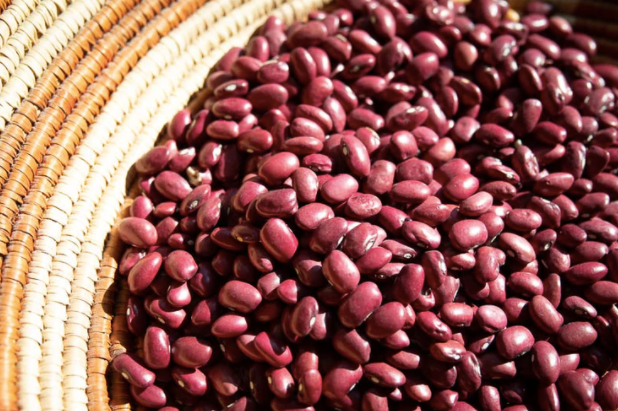 Beans - Rancho Gordo Heirloom Hidatsa Red Bean