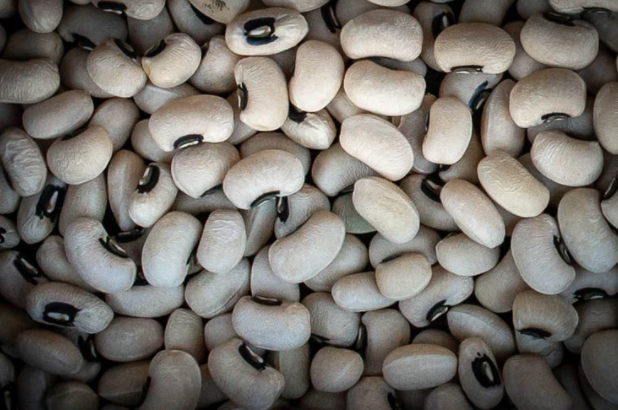 Beans - Rancho Gordo Heirloom Super Lucky 2021 Black Eyed Pea