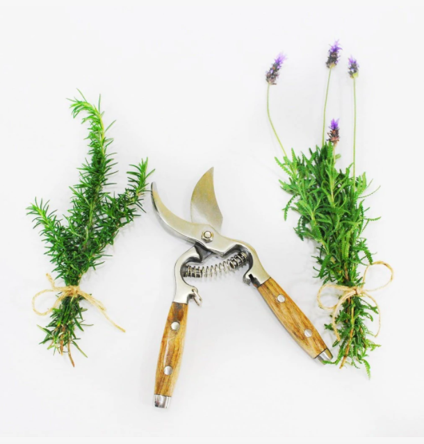 Secateurs with Wooden Handles