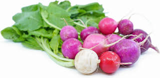 Vegetable - Organic Radish, Easter egg, Grocery, Anneliese Schools - LIESAS