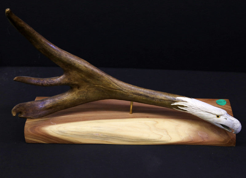 Small sized hand carved moose antler small--eagle head mantle post