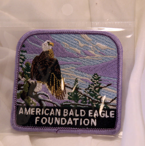 ABEF artist of the year patch