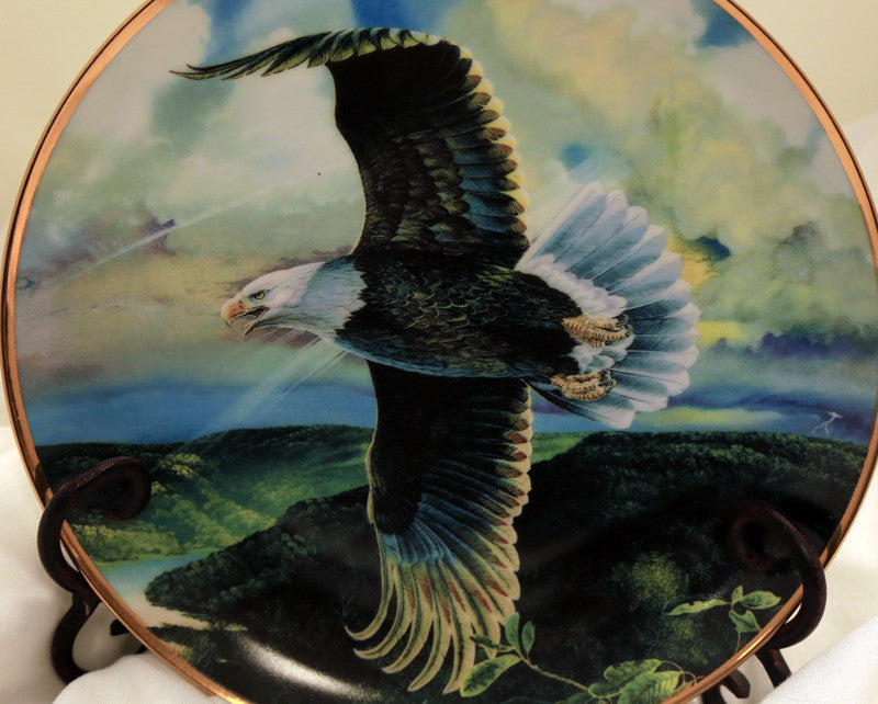 Save the Eagle Proud and Free plate