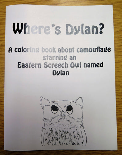 Wheres Dylan Coloring Book