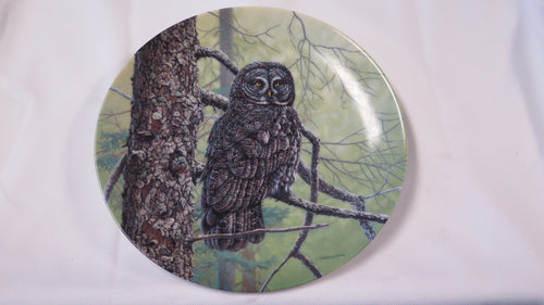 The Great Gray Owl