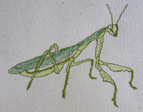 Child's Embriodered Praying Mantis Apron
