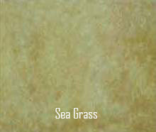 Sea Grass Concrete Stain