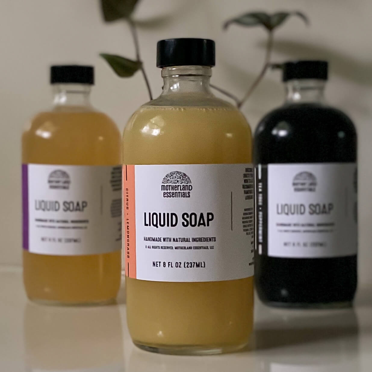 Citrus + Lemongrass Body Wash
