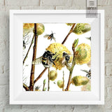 Square Dance of the Bees Wall Art