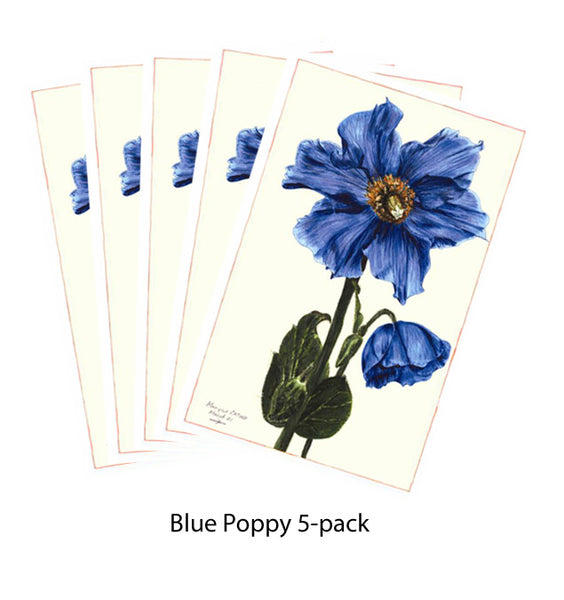 Note Card - Blue Poppy 5-pack