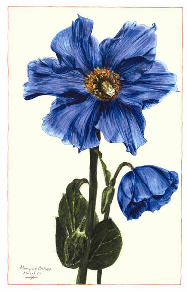 Note Card - Blue Poppy
