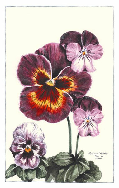 Note Card - Pansies