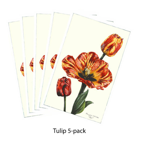 Note Card - Tulip 5-pack